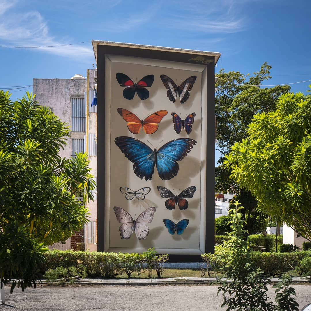 Majestic murals that are completely freehand 🦋💞    #ThisWeekOnInstagram