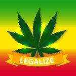 Image for the Tweet beginning: #cannabis #marijuana #weed Three arrested