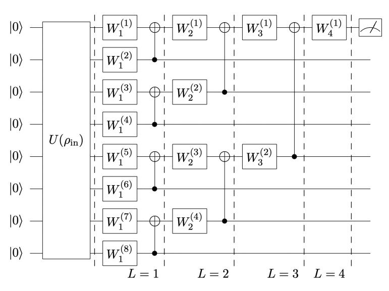 木構造QNNの勾配損失は多項式的2値分類タスクでランダム構造QNNより収束が速く精度が高い#必要になったら読む
