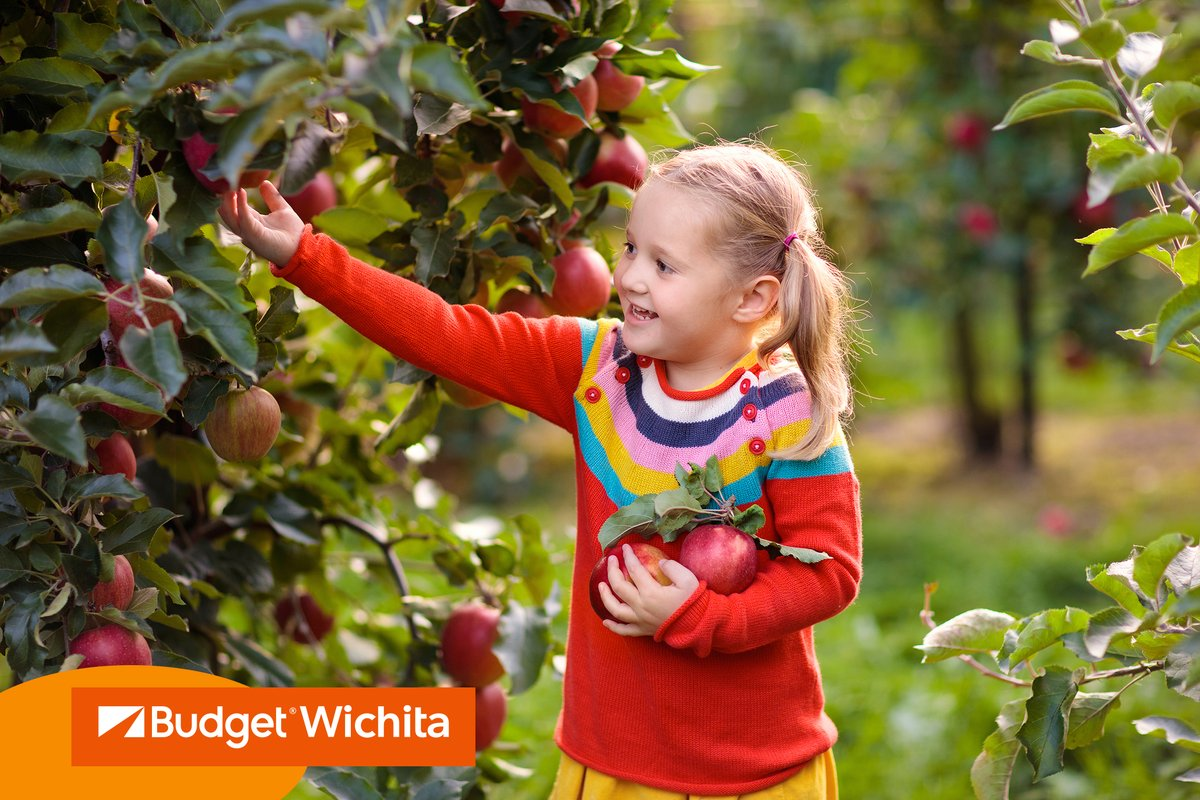 Take advantage of the weather and head out to your local apple orchard for some socially distanced apple picking. Load up the whole family and let Budget Wichita get you there with one of our top-of-the-line fleet vehicles. https://t.co/s24kIs0qtP #WichitaFamily #ApplePicking https://t.co/foLXvh89mf