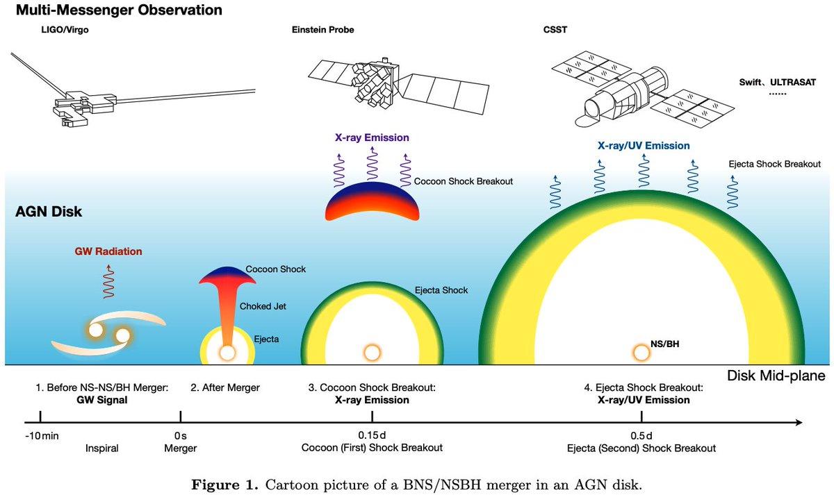 #キャルちゃんのarXiv読みSMBHの降着円盤内で起こった中性子星連星合体or中性子星BH連星合体から発生したジェットがどのようになるかを研究。コクーンの冷却放射とキロノヴァ放射は円盤からの放射を凌駕することが判明。ApJL.