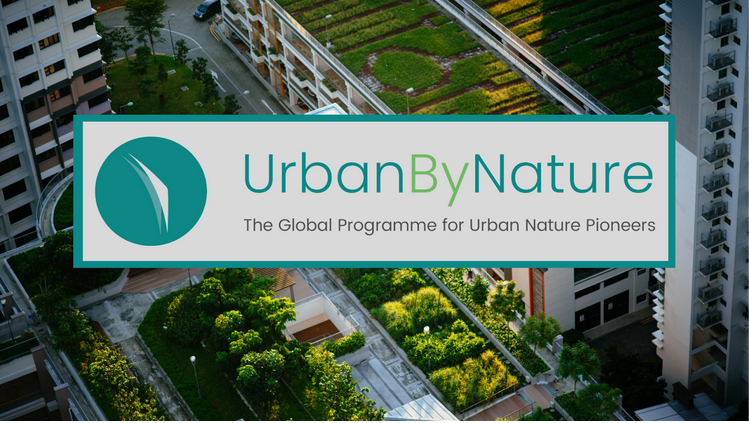 #UrbanByNature programme kicks-off EU-China cooperation to build liveable #CitiesWithNature at the 4th High-Level International Forum on Sustainable Urban Development  Feat. @ConnectingNBS @CLEVER_Cities @CitiesWNature @ICLEI_Europe @ICLEIEAS  More info: https://t.co/99RPdijdBj