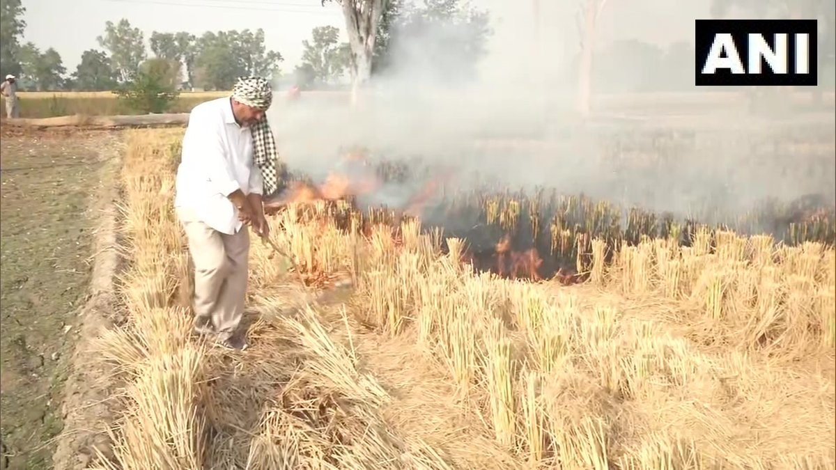 "Punjab: Farmers near Jalandhar's Phillaur continue to burn stubble.  ""We are helpless, we don't have any option. The government doesn't help us or provide any kind of subsidy,"" says a farmer https://t.co/L1qeWH9IoN"