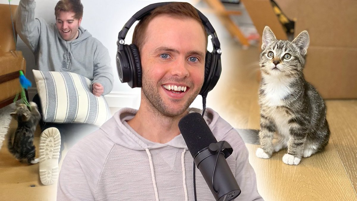 NEW VIDEO!! Meet Our New Kitten  🐈