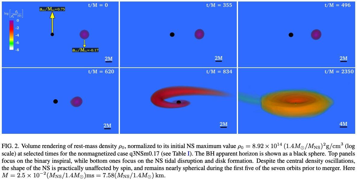 #キャルちゃんのarXiv読みBH中性子星(NS)連星の合体において、NSのスピンがどのような影響を及ぼすかを調査。回転方向と同じ方向のスピンが大きくなると、最後にできるBH降着円盤の質量と放出される質量が大きくなる傾向を発見。