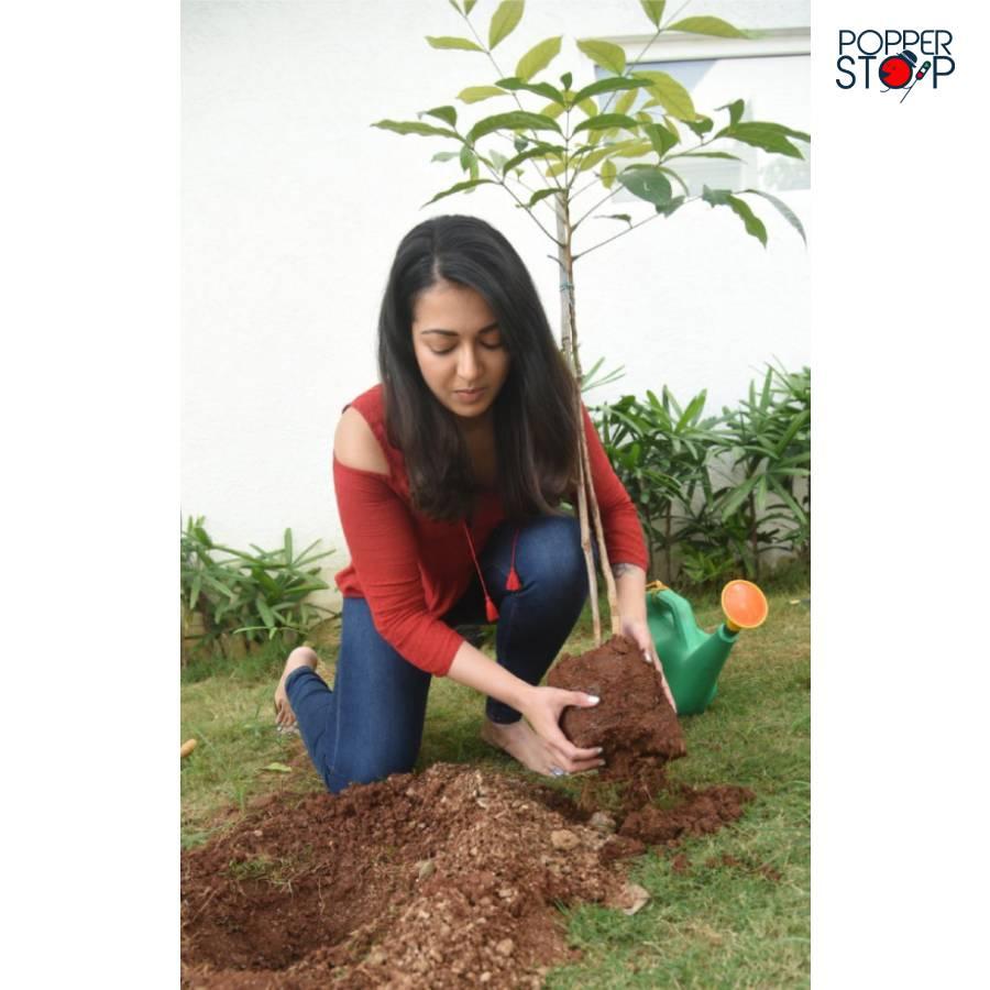 @CatherineTresa1 Accepted the #HaraHaiTohBharaHai #GreenindiaChallenge and planted 3 saplings 🌱🌱..  #CatherineTresa #PopperStop #popperstoptelugu