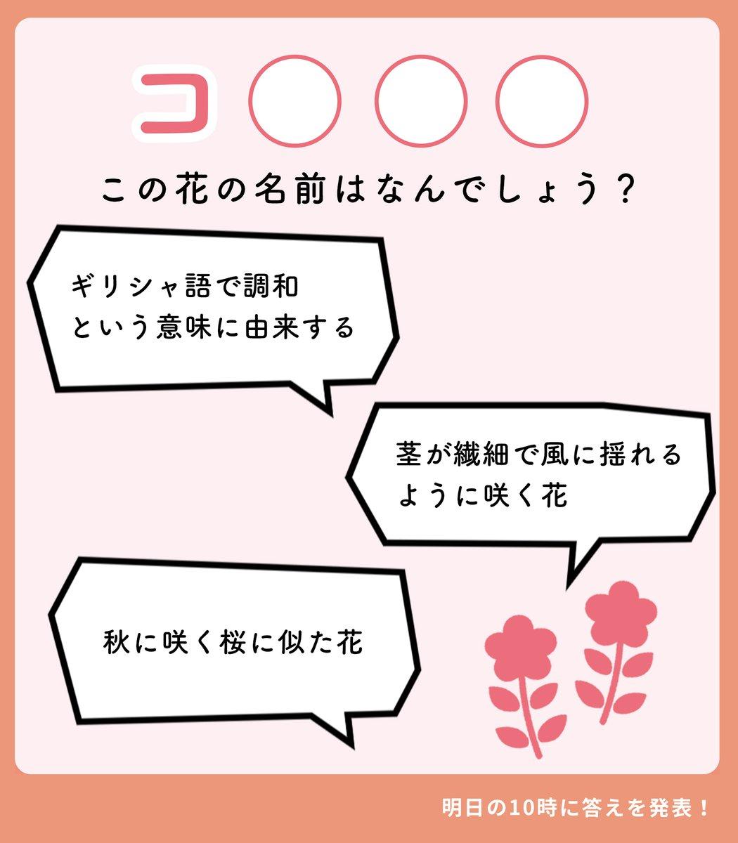花キューピット | i879.com【公式】さんの投稿画像