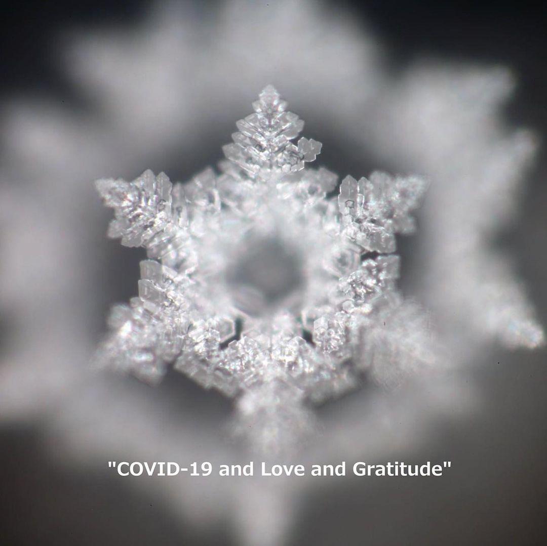 Dr Masaru Emoto  #Love & #gratitude #heal #fromTheCovid19.❤️🙏 https://t.co/yAkM1Wqjgk https://t.co/7y3xQciTEa