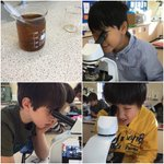 Life under the lens. Our Year 5 #scientists were fascinated studying the effect of caffeine on heart rate by using daphnia - aka water fleas! (FYI - Mrs Roberts assures us that a water flea has no central nervous system and therefore cannot feel pain). 🔬👀 #learning #science