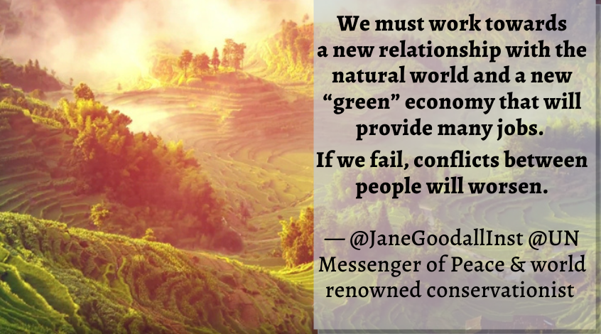 """We must work towards a new relationship with the natural world and a new green economy that will provide many jobs""  — @JaneGoodallInst @UN Messenger of #Peace & world renowned conservationist   Read how ""We All Must Take Action"":  #UN75 #UNDay  #ForNature"