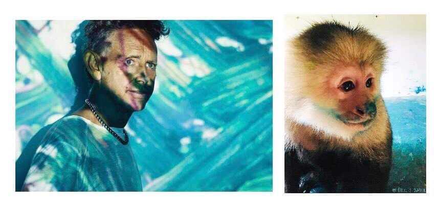 """Such an honour my monkey art is part of this amazing forthcoming EP project """"The Third Chimpanzee"""" by creative genius Martin Gore with full release 29/01/2021. I think we both love blue! @depechemode @RollingStone @MuteUK @MuteUSA  #martingore #DepecheMode"""