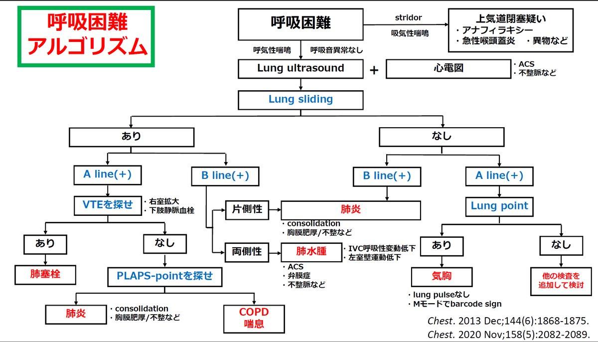 肺エコーのreviewがありました!呼吸困難の診断には欠かせません!アルゴリズムとともに紹介します。