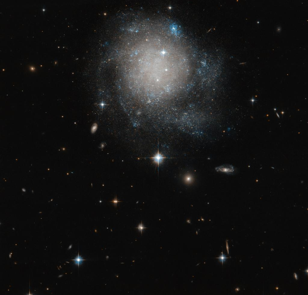 It's Friday! To kick off the weekend, here's a Hubble image of the galaxy UGC 12588. Though classified as a spiral galaxy, its arms are faint – the clearest view of them comes from the blue stars sprinkled around the galaxy's edges:    #HubbleFriday