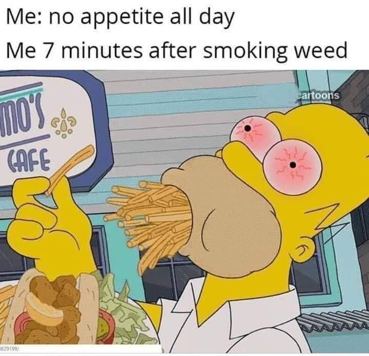 Everyday 🤣