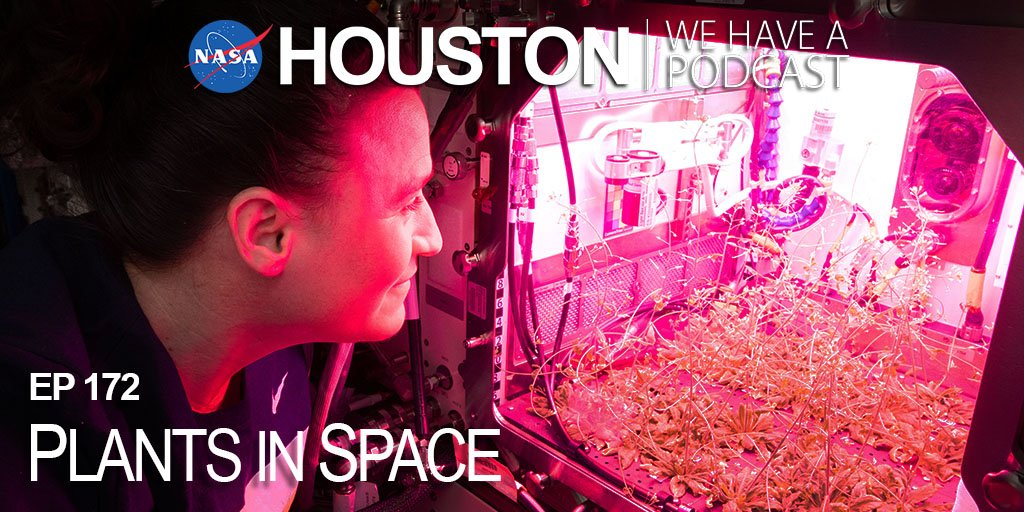 "This week on ""Houston, We Have a Podcast,"" we're talking about plants 🌱 in space!  👂 Listen: https://t.co/iK01mMdp23 📖 Read the transcript: https://t.co/NSJmcsJMYx https://t.co/cqp7OPr3HN"
