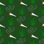 Image for the Tweet beginning: #cannabis #weed #marijuana Marijuana applications