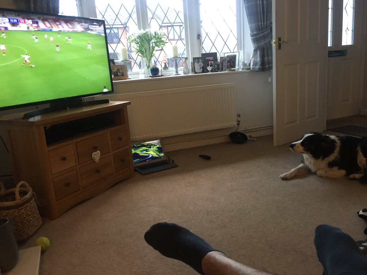 @OfficialBWFC @conweaver @jamesbwfc22 @BOLTONFMSPORT even my dog is enjoying this game