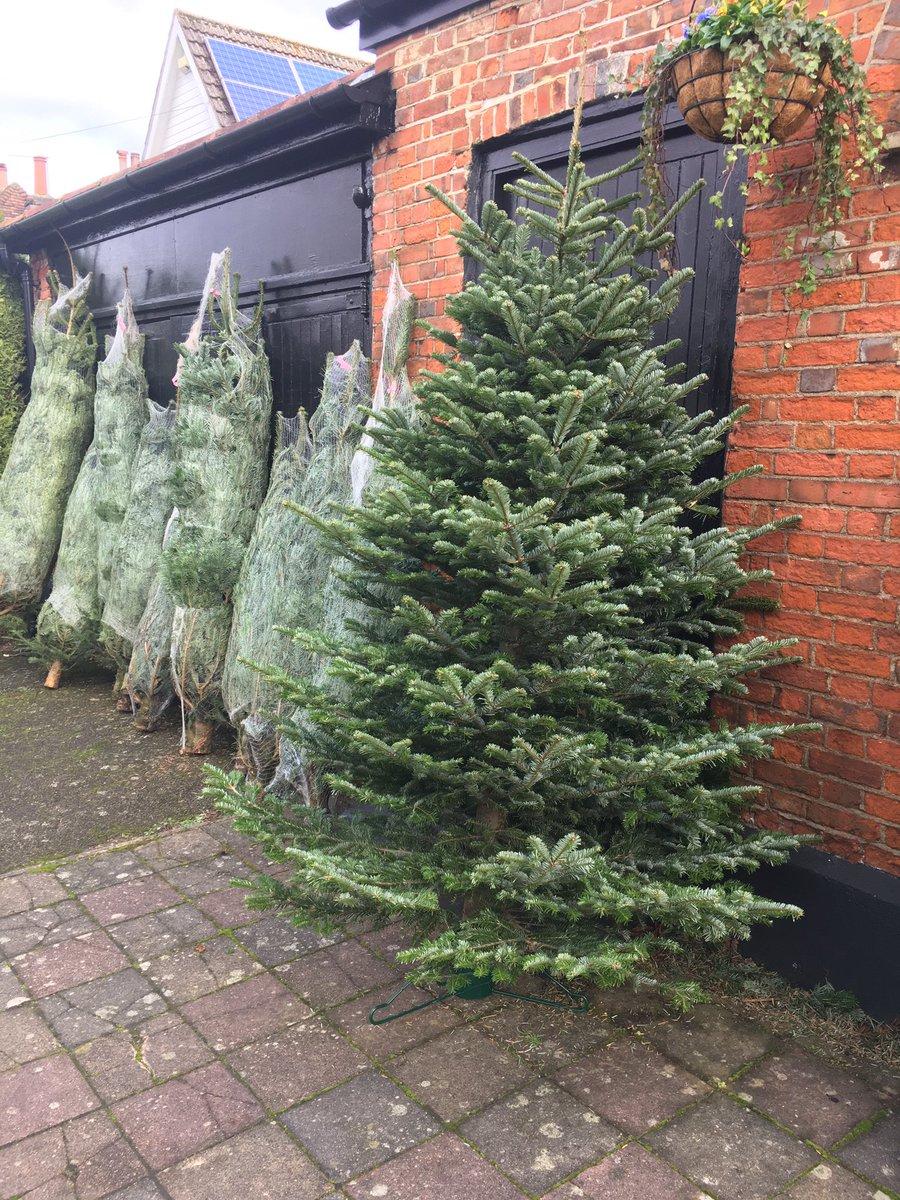 Some lovely looking trees 🌲🎅🏻#Christmas2020 #ChristmasTree #Blackheath #BlackheathVillage #StaySafe https://t.co/PDfapvIt0I