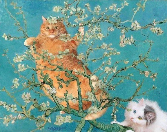 #Caturday Van Gogh-style!Credit: @FatCatArt #VanGoghMuseum #Art #DailyArt #VanGogh #ArtExhibition #CaturdayEve #SaturdayVibes #SaturdayMornings