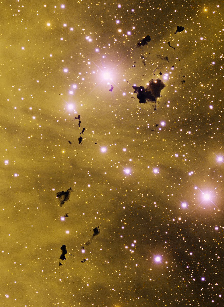 Beautiful view of an array of dark Bok globules, known as Thackeray's Globules, seen in silhouette against the emission nebula IC 2944 in the constellation Centaurus.  (Credit: T.A. Rector (University of Alaska Anchorage) and N.S. van der Bliek (NOIRLab/NSF/AURA))