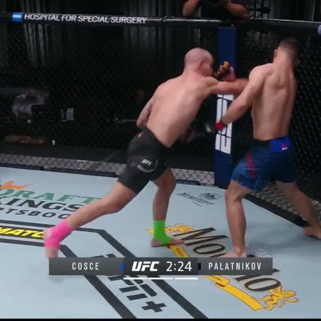 @UFC_CA's photo on Palatnikov