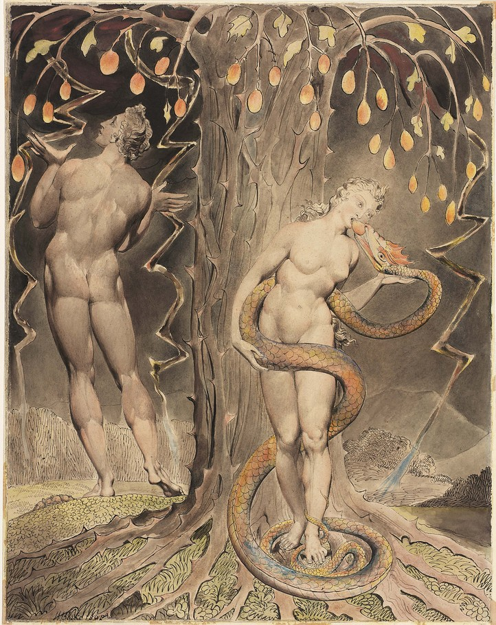 """""""How like Eve's apple doth thy beauty grow, If thy sweet virtue answer not thy show."""" ~ Sonnet 93. #ShakespeareSunday #WilliamBlake"""