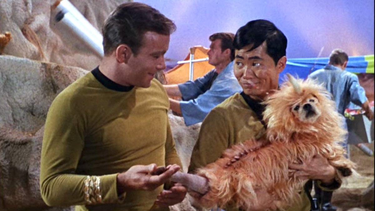 オリジナルのスタートレック見始めたけど6話に謎の宇宙生物出てきてどう足掻いても犬で和んだ