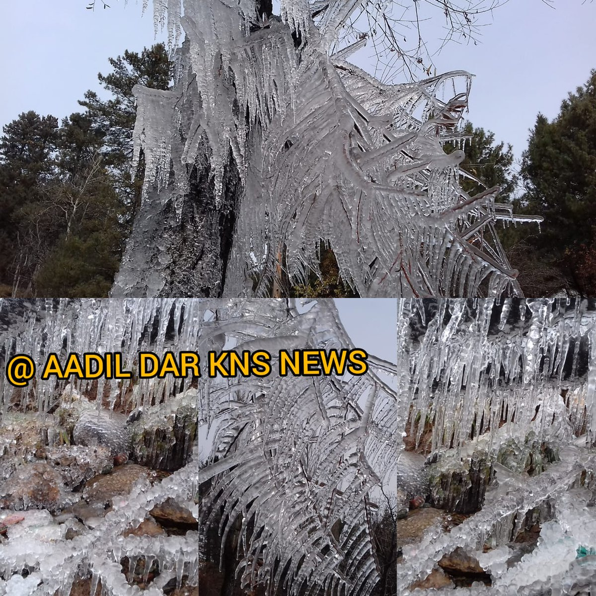 Watch//KNS// The icicle were hanging at #Tangmarg #Drung area were scores of visitors and local public captures selfies with icicle. Photo #KNS Correspondent #Aadil Dar Tangmarg Gulmarg