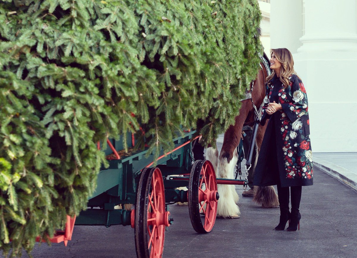 Since 1966, the arrival of the White House Christmas Tree has become an iconic holiday tradition. This year's tree, a lovely 18 1/2 foot Fraser Fir from Dan and Bryan Trees of West Virginia, will arrive tomorrow at the @WhiteHouse North Portico. #WHChristmas