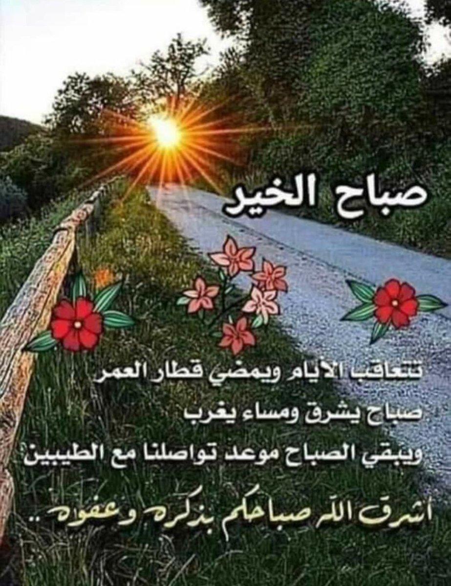 @DIVADI9 @Hussein95310181