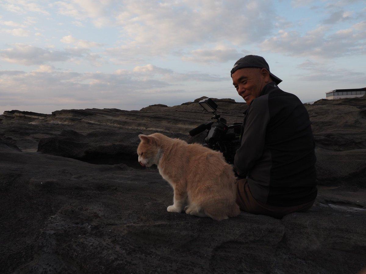 明日の世界ネコ歩きは「三浦半島」三浦の人はネコとの距離が近い。熱帯魚屋では元ノラがカウンターで寝ていた。カメラに寄り添う大根農家のネコ、この子も元ノラ。海岸で暮らすミルクティーとは、とても気が合う。彼は人を信じている。いいネコのそばには、必ずいい人がいる。