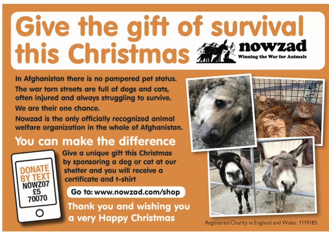 Stuck for a Christmas Gift idea? 🎁   A Nowzad Sponsorship Gift is a special way to provide an animal in Afghanistan with the gift of life this Christmas, as well the perfect way to show someone special you care.