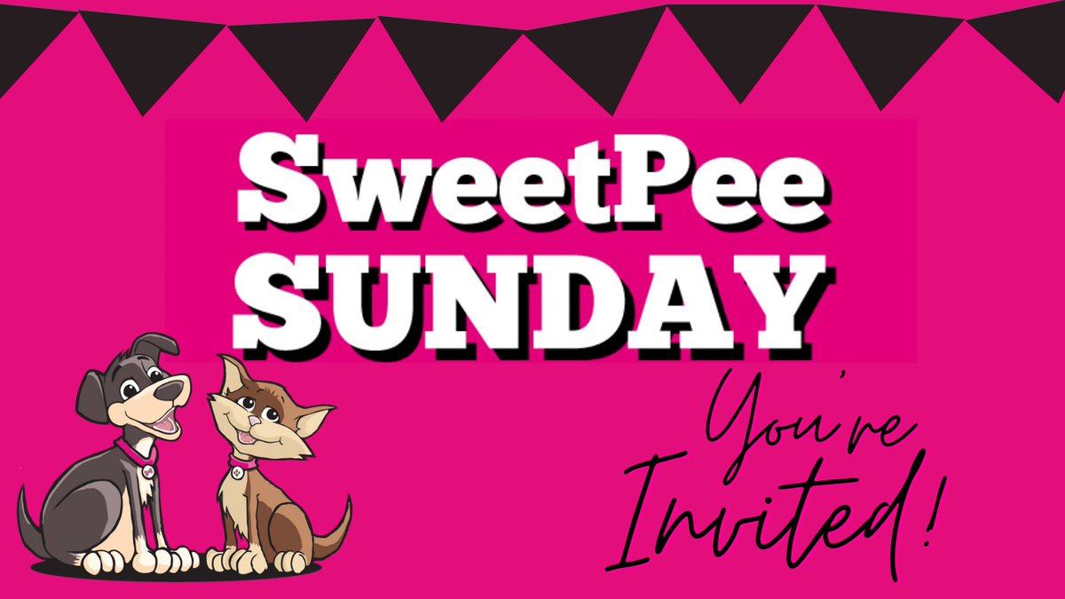 . Forget Black Friday....... forget Cyber Monday......  SWEETPEE SUNDAY is where the real bargains are.  AND.......You're Invited!  When - Sunday 29th November 2020 Where - https://t.co/kgXLRC8TvN  Use code SUNDAY at the checkout #dogs #cats #pets #Sunday #bargains https://t.co/bYfOearzQ9
