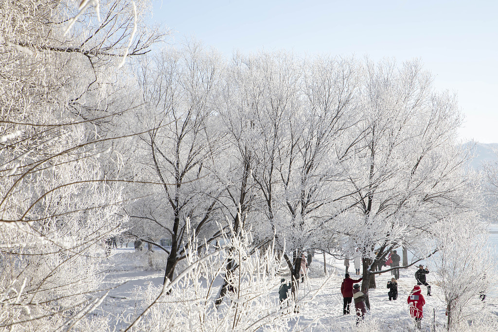 In pictures: Stunning scenery along northeast China's Songhua River, #Jilin Province spurs locals to embrace winter.