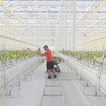 Image for the Tweet beginning: Future of Farming: Bluegrass agtech