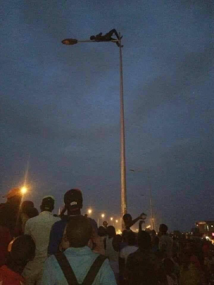 Breaking News: Thief climbs electric pole to avoid beatings