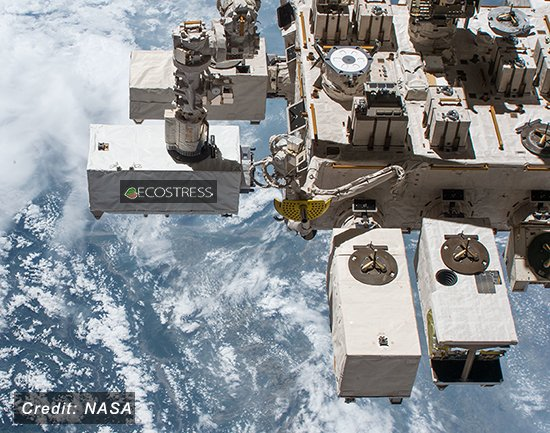 In 20 years, @ISS_Research has enabled us to study our home planet. From astronaut photography of storms, to the height and temperature of plants, to the amount of sunlight reaching the surface, the @Space_Station gives us a unique platform to see Earth.