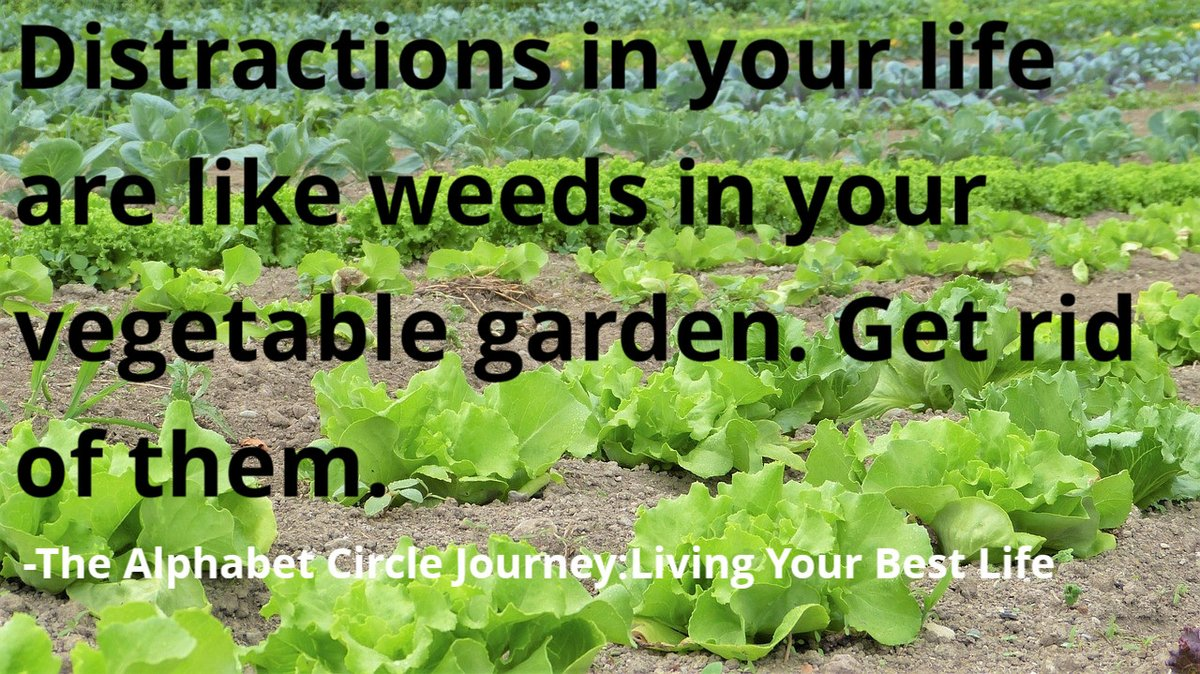 Distractions in your life are like weeds in your vegetable garden. Get rid of them. -The Alphabet Circle Journey:Living Your Best Life   #Mondaymotivation #Bestlife #TheAlphabetCircleJourney