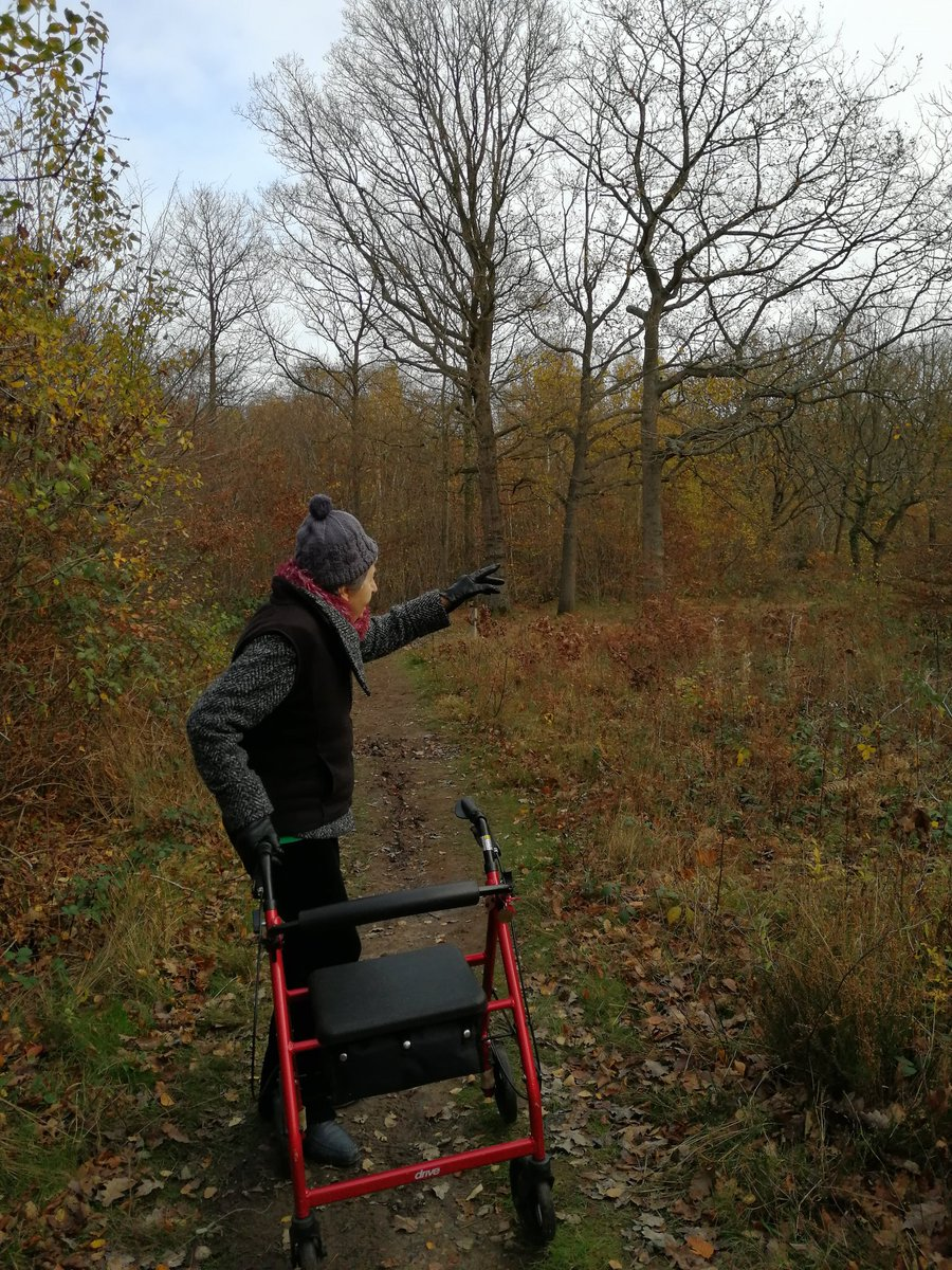 #Sunday #walking out in 🌳Blean Woods 🌳with 💖mum 🤗#Canterbury #Kent #SocialDistancing #natureheals #wellness #wellbeing #walks #over60 #wellness #woodlands #autumncolours #leaves #trees #unpaidcarers #carers #dementiafriendly #keepconnected #CarersRightsDay .@WhitstableLive https://t.co/wqk6kJOXFa