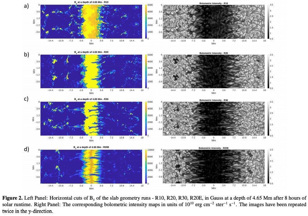 #キャルちゃんのarXiv読み黒点形成シミュレーションを行ったMURaMコードを用いて、fluting不安定性が黒点の地下構造に与える影響を調査。磁束管の曲率がfluting不安定性具合を決定することが判明。