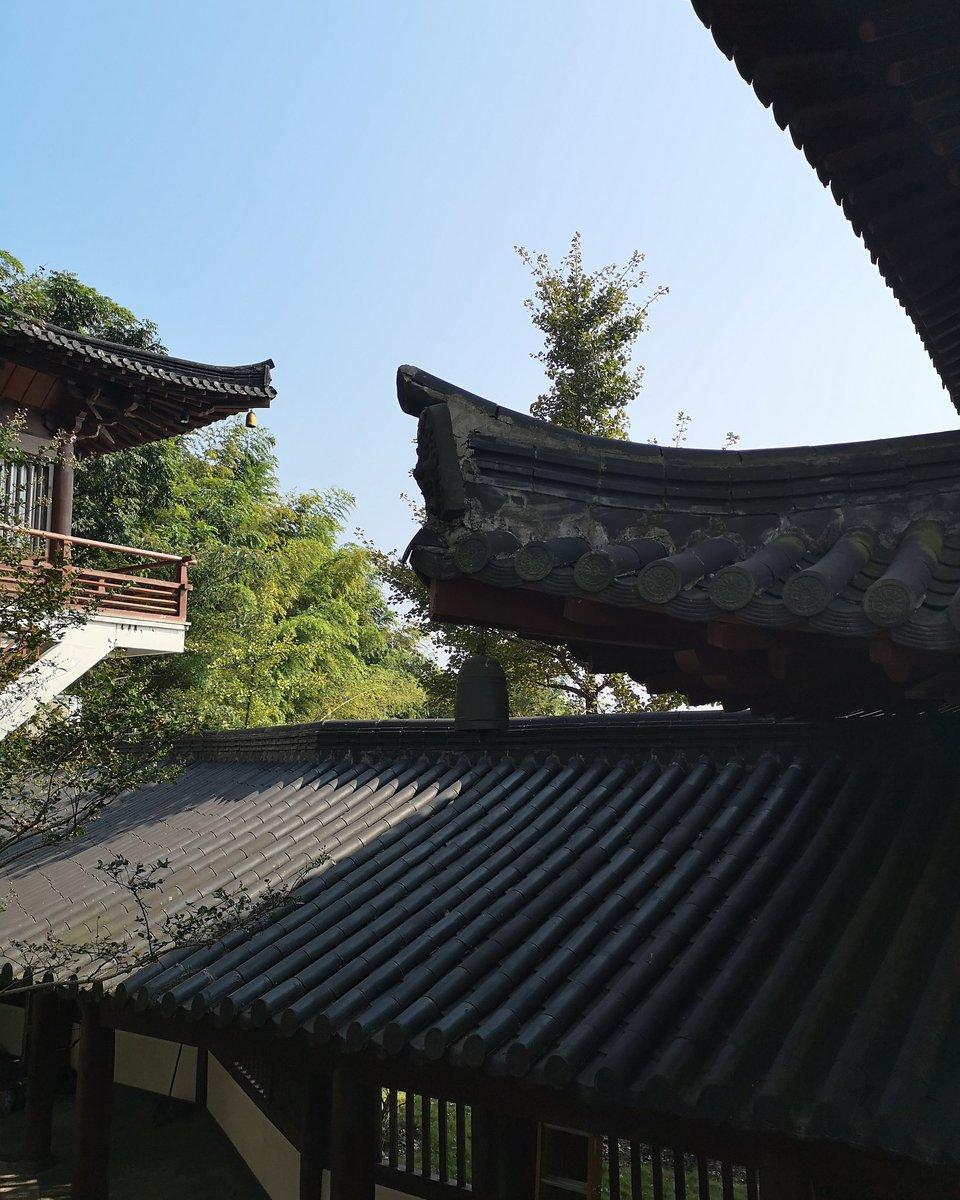美丽中国 Lugar hermoso de China Beautiful place of China    #China #travel #travelphotography #traveler #traveling #travelblog #Viajes #viajesyturismo #viajeros #landscape #Paisajes #Tourism #chineselandscape https://t.co/UY8a0M4x3T