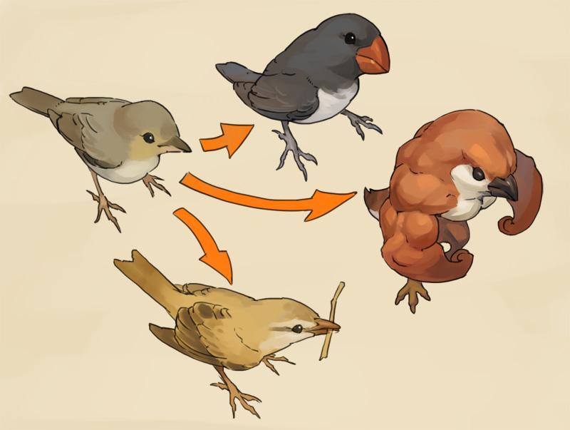 11月24日は進化の日