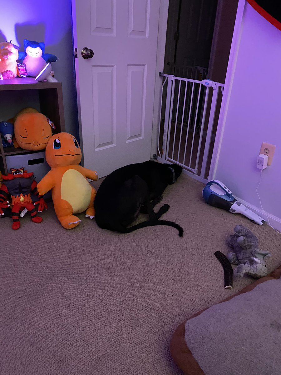 AutumnMae - Noodle wants to leave daycare