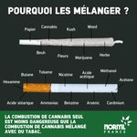 Image for the Tweet beginning: 🚭#MoisSansTabac   La conso de #cannabis