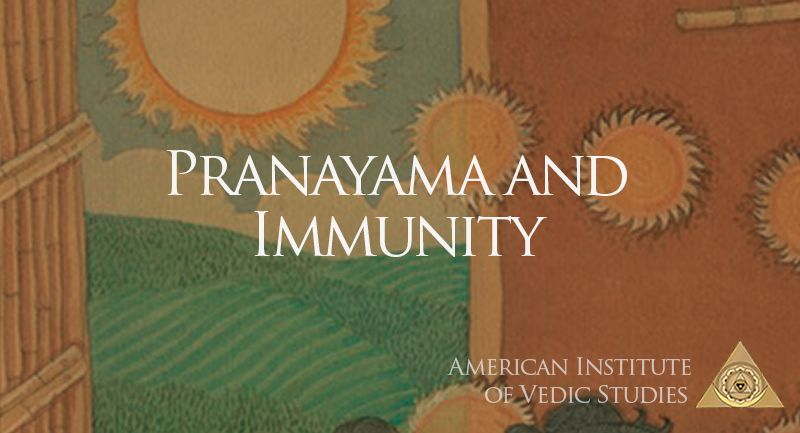 As we sail through difficult times where boosting immunity is the need of the hour, read this piece by Dr. David Frawley on how Pranayama balances and ensures the flow of Prana, the key to health and wellbeing. #Yoga #Ayurveda