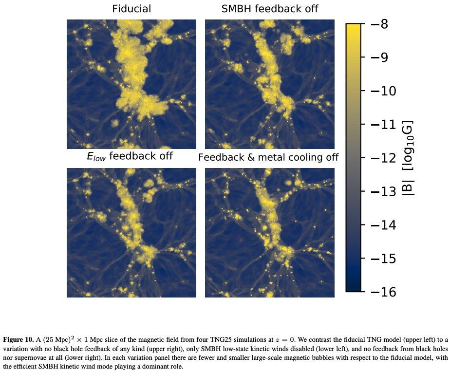 #キャルちゃんのarXiv読みIllustrisTNDシミュレーションを用いて、銀河形成がIGMの磁場に与える影響を調査。銀河内で磁場が増幅されるように、IGM磁場も初期条件による原始種磁場に依存しないことが判明。