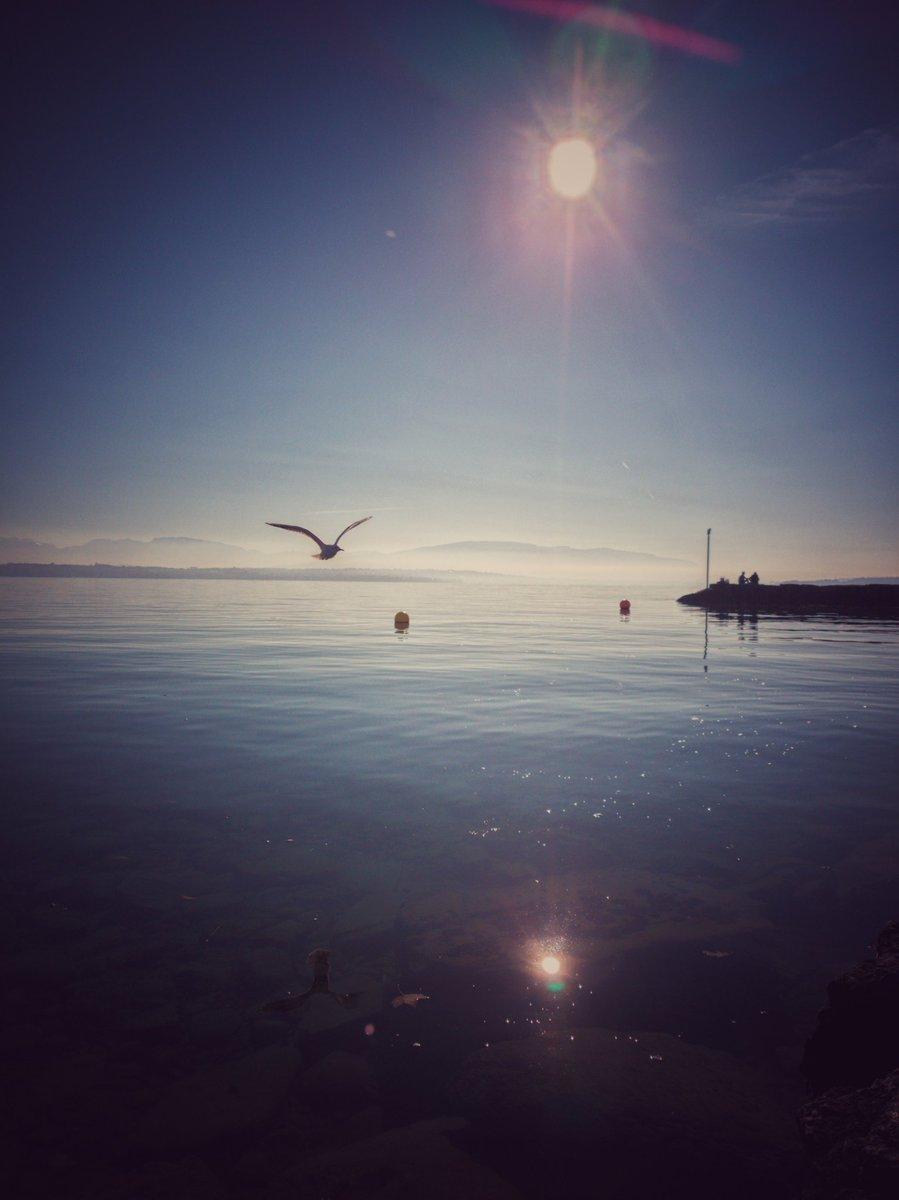 👌#coppet  #lacleman #suiza #suisse #geneva #geneve #lakegeneva #myswitzerland #swiss #naturaleza #lausanne #lake#swissalps #visitswitzerland #jetdeau #visitgeneva #france #thononlesbains #vevey #genfersee #inlovewithswitzerland #verano #yvoire #lacdegeneve #sunsetphotography