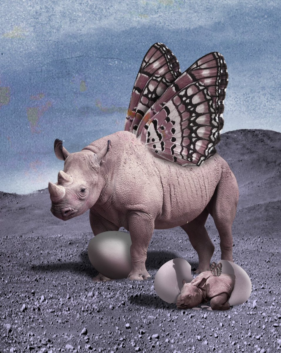 This was an exercise for class, I tweaked the image compared to what I followed along with, and I added the hatching rhino. I am VERY happy with this one #photoshop #art #artist #bigbearrdesigns #rhino #butterfly #alien #digitalart
