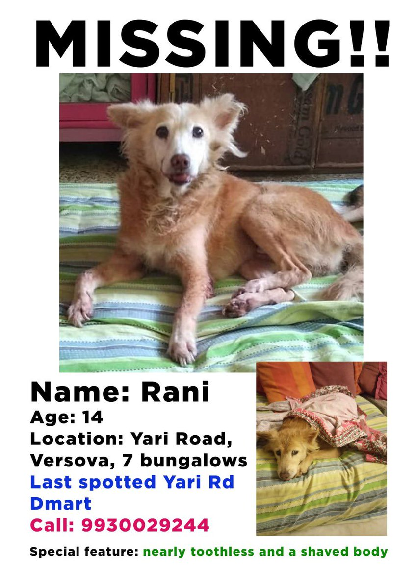 Versova, Andheri West and surrounding areas. This sweetoo was from my building 😕