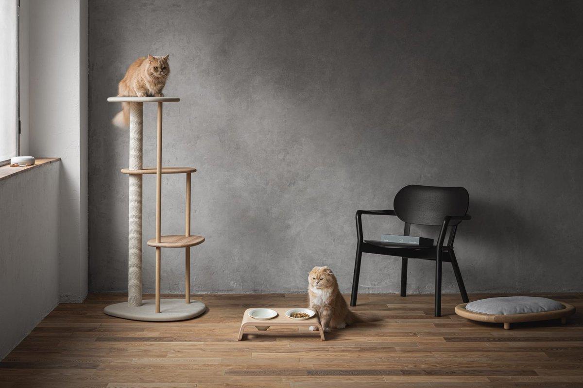 カリモク家具の猫用ブランド「KARIMOKU CAT」からキャットテーブル登場、食事中の負担を軽減